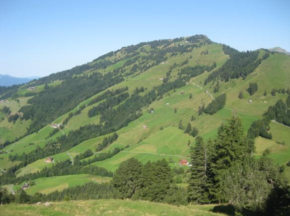 View back from above Gätterli to the Scheidegg