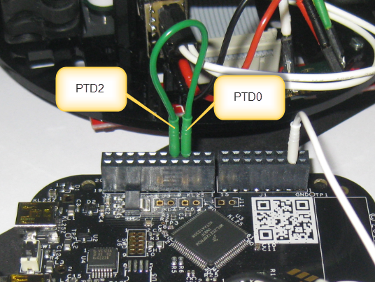 Connection between PTD0 and PTD1