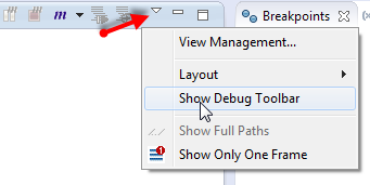 Show Debug Toolbar