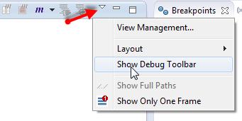 Show Debug Toolbar