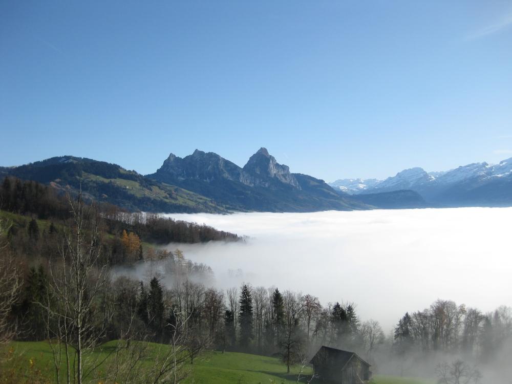 Inversion Day