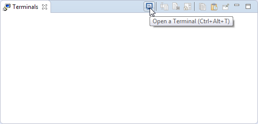 Open New Terminal