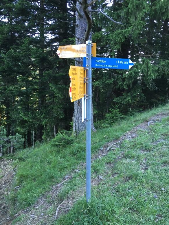 Alpine Trail Signage