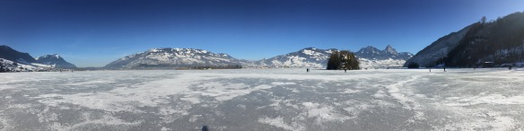 Panorama on Ice