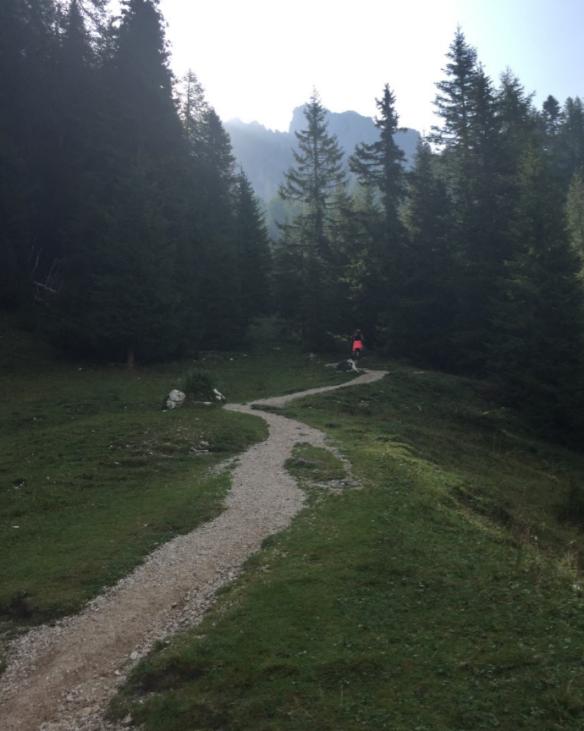 Sagenweg Going Up