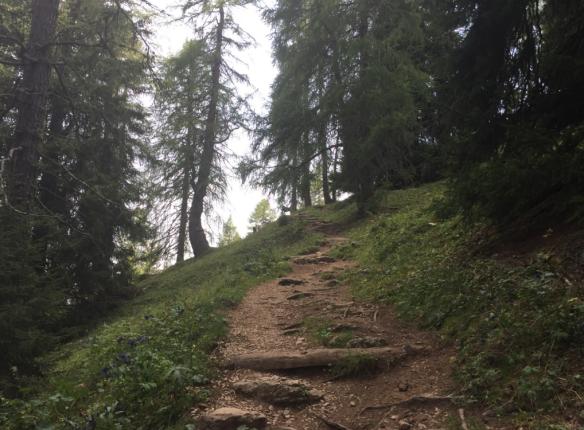 Way up the Sagenweg