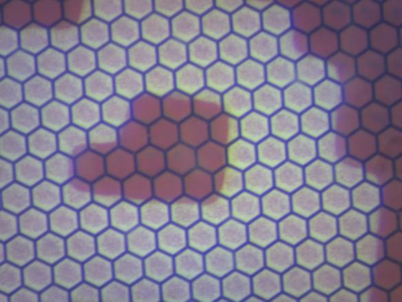E-Paper Detail