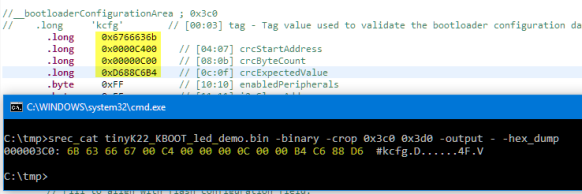 Inspecting values in binary file