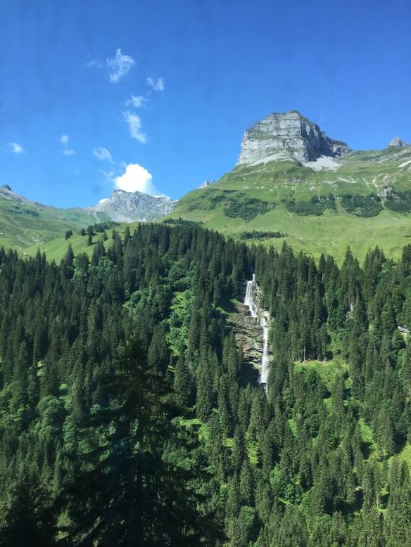 View to Waldisee