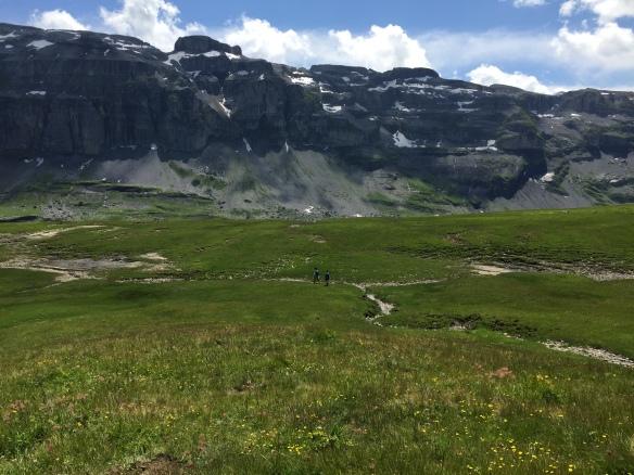 Crossing Alpine Meadows
