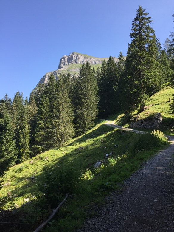Road to Milchbüelen