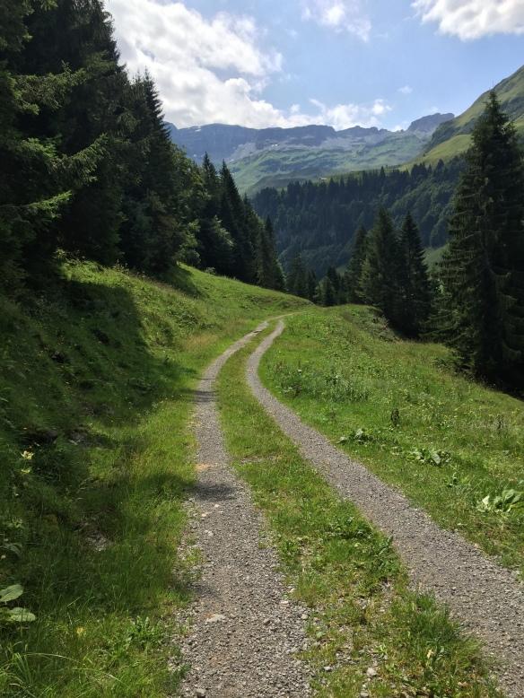 Road to Salisee
