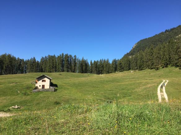 Wuhnleger Meadow