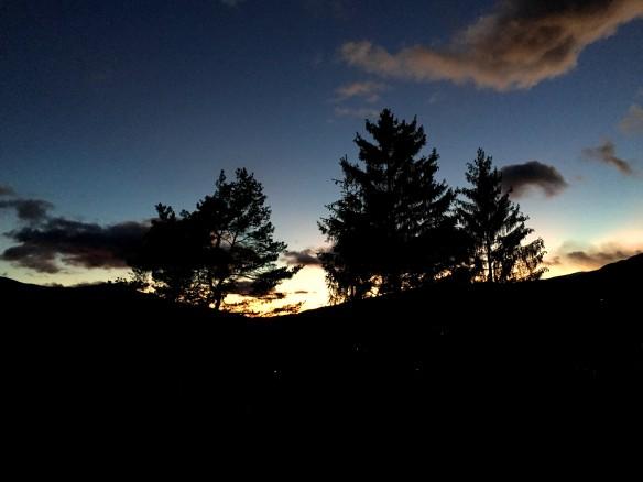 Mountain Tree Sunset