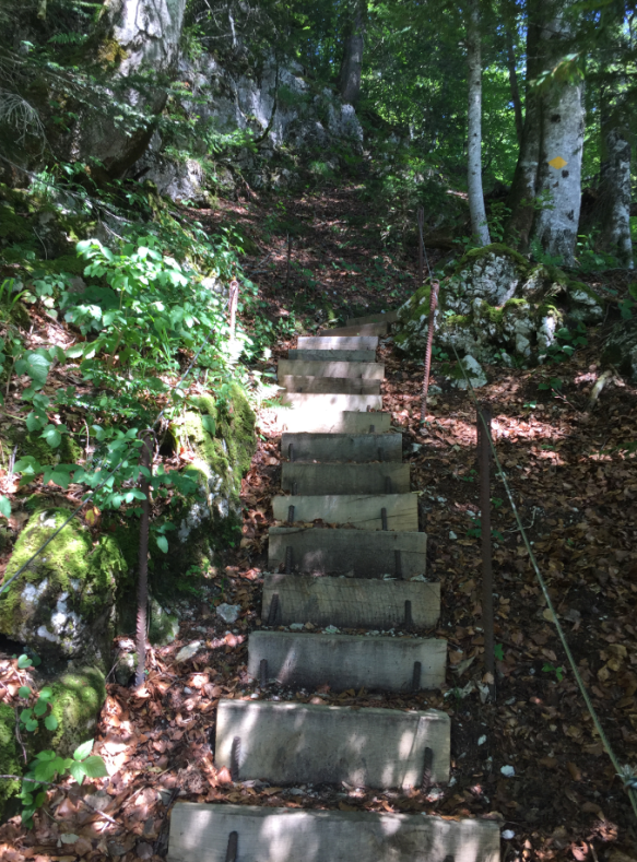 Stairs on the trail