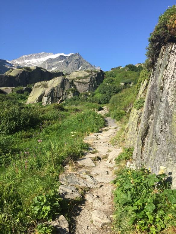Trail to Bergseehütte